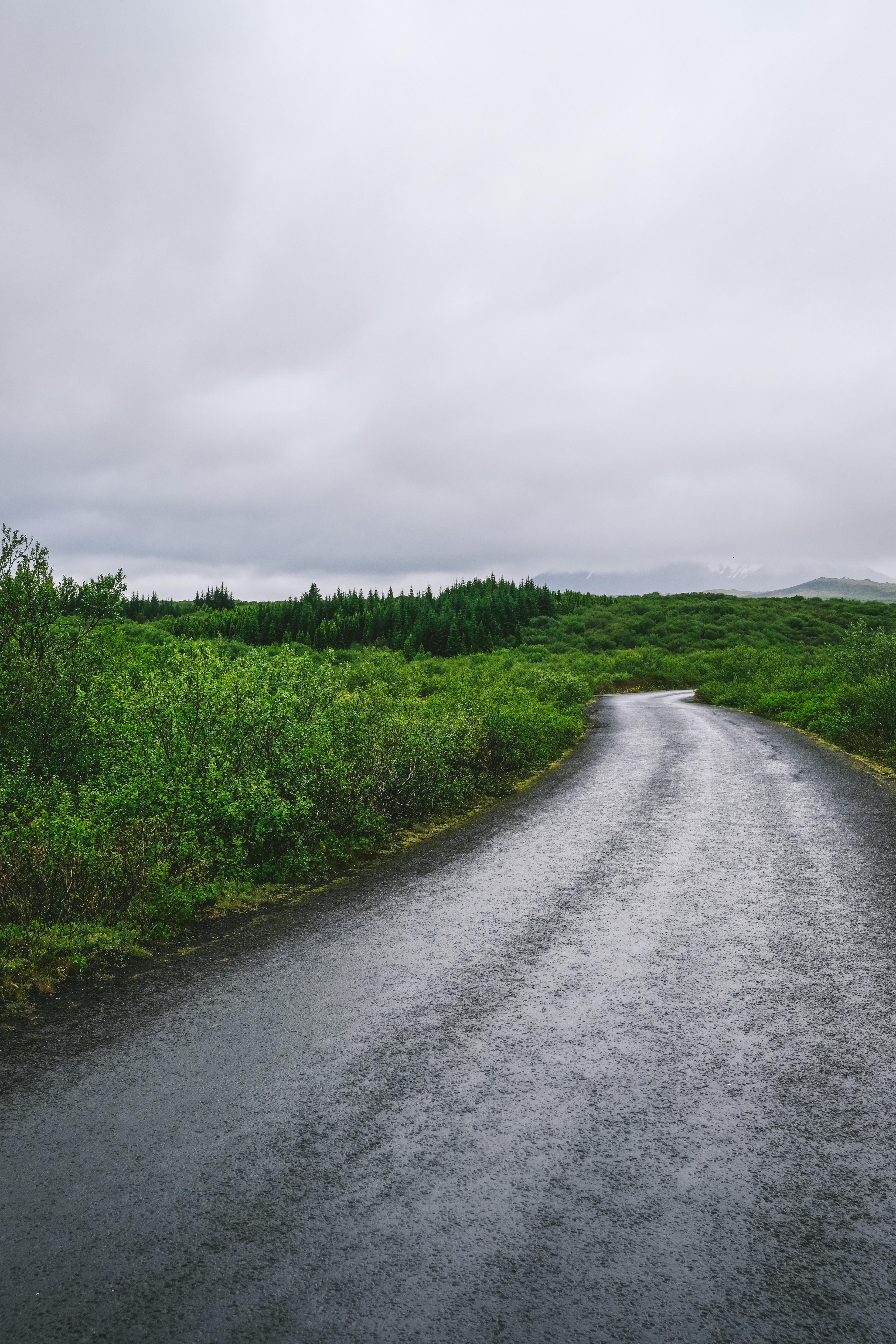 meganearderighi-megandcook-islande47